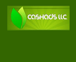 Cashads.png