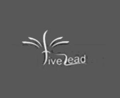 FiveLead.png